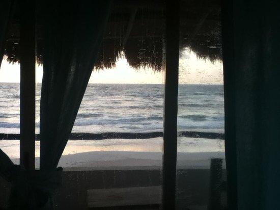 Hotel Playa Kin Ha : Room view