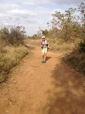Honeyguide Khoka Moya & Mantobeni Camps: The path to our tent