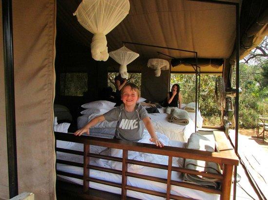 Honeyguide Khoka Moya & Mantobeni Camps: Tent #4 - home sweet home!