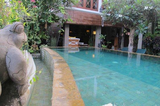 Umah Watu Villas: The pool