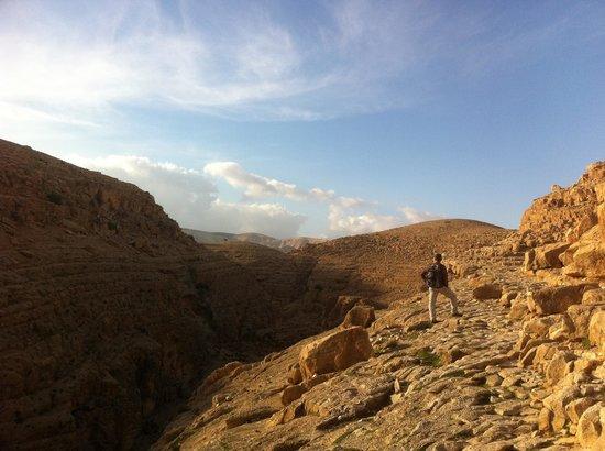 Walk In Israel