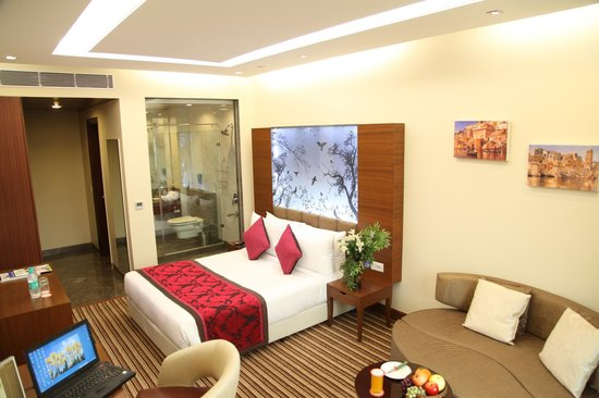 New Haven Hotel : Premier Room