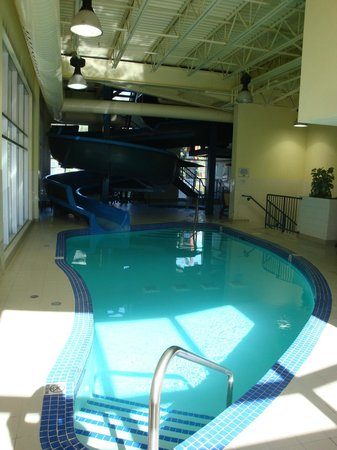 Ramada Canmore: pool