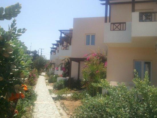 Sofia Beach Hotel: Path to pool