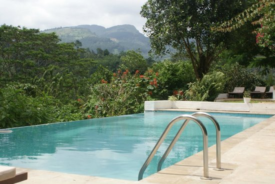 Ellerton Bungalow: The pool and view down the valley at Ellerton