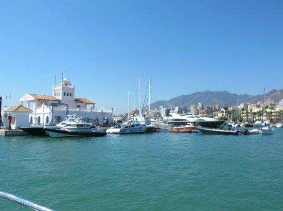 Hotel Palmasol: Marina