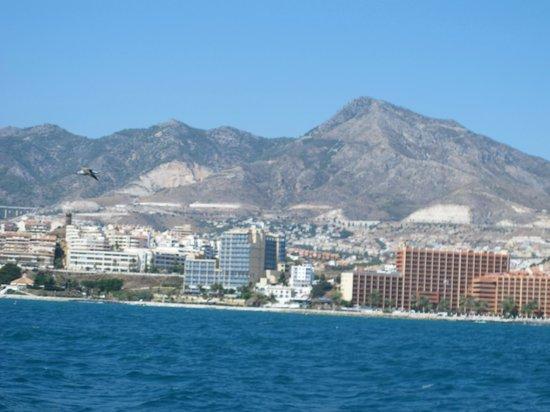 Hotel Palmasol: Boat view