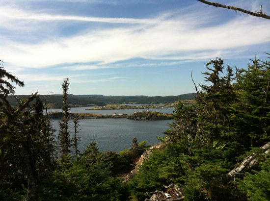 Fishers' Loft Inn by Ship Cove : On one of the hiking trails...