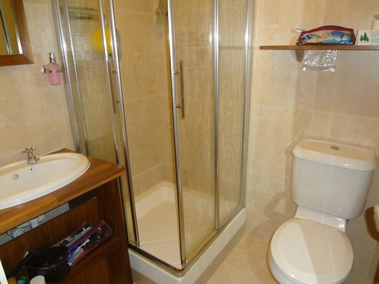 The Central Hotel: small shower, plenty of shelving