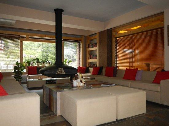 Ioana Hotel: Ioana's lounge area