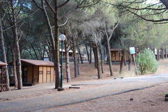 Lisboa Camping & Bungalows: Bungalow