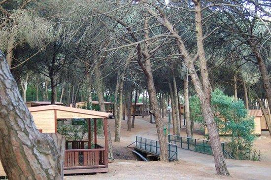 lisboa camping & bungalows: bewertungen, fotos & preisvergleich