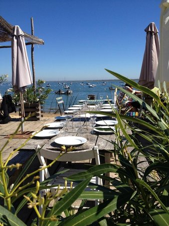 Decanter Tours: A delightful lunch in front of the Bay of Arcachon