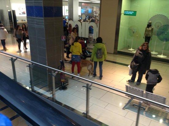 Shopping picture of galleria commerciale porta di roma - Auchan volantino roma porta di roma ...