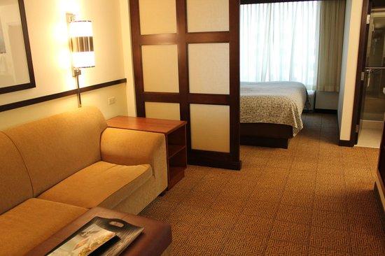 Hyatt Place Ft. Lauderdale Airport & Cruise Port: Standard Room