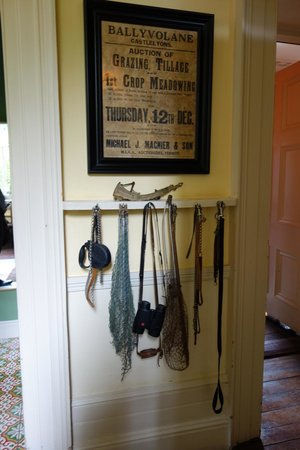 Ballyvolane House: Another charming collection
