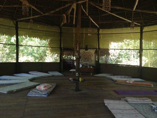 The Hummingbird Ayahuasca Retreat Center: Inside the Moloka