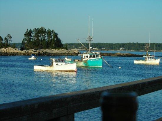 River Run Tours, Inc. : Five Islands Seafood