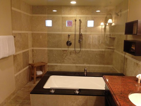 Omni Scottsdale Resort & Spa at Montelucia: Exquisite shower and tub area. Only shows half of the bathroom.