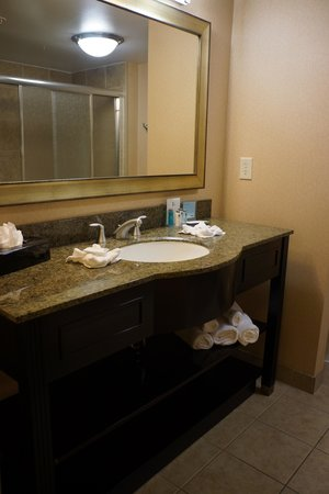 Hampton Inn & Suites Houston-Bush Intercontinental Airport: The bathroom