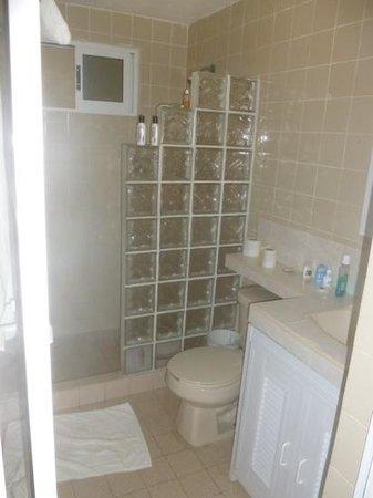Hotel Arrecifes Suites: bathroom