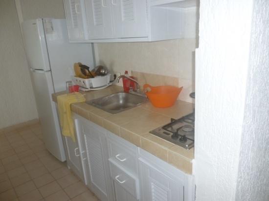Hotel Arrecifes Suites: 2 burner stove