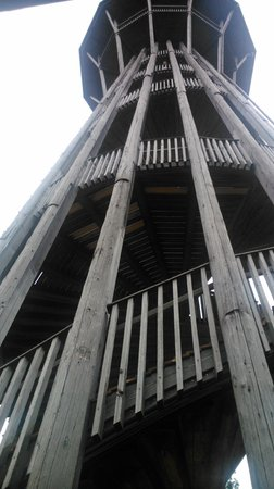 Sauvabelin Tower : Torre Sauvabelin.