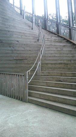 Sauvabelin Tower : Escalera de subida.