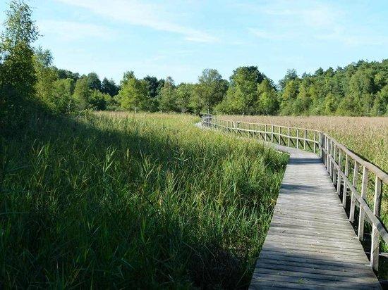 UNESCO-Biospharenreservat Schaalsee