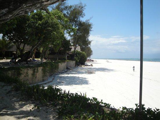 Baobab Beach Resort & Spa: immense plage