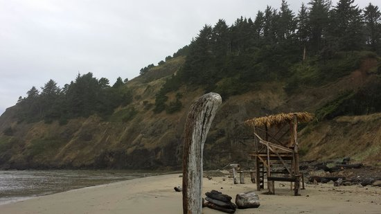 Starfish Point Condos: beach