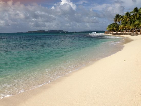 Palm Island Resort & Spa: Beach