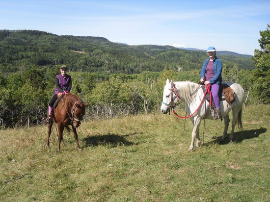 ‪‪Moose Mountain Horseback Adventures - Day Tours‬: Maverick and Yahoo (white one)‬