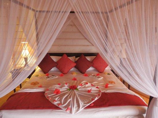 Honeymoon Decoration In Maldives : Our honeymoon decoration! - Photo de Komandoo Maldives Island Resort ...