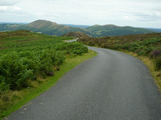 The Long Mynd: Burway Hill from Long Mynd