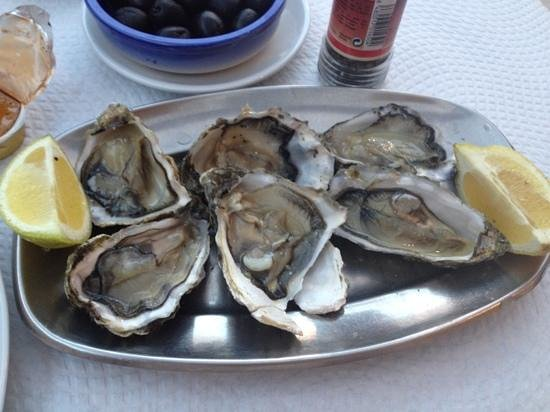 Cabanas, โปรตุเกส: fresh oysters