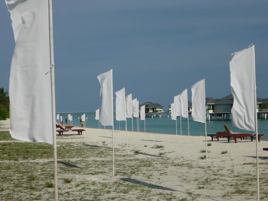 Sun Island Resort and Spa: way to the marriage pavilion