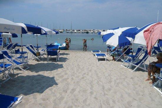 La belle plage face au port - Picture of Hotel Bagni Lido, Vada ...