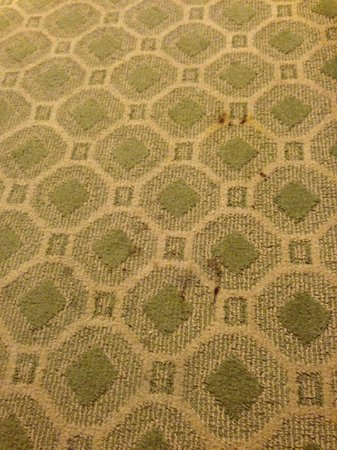 Lord Baltimore Hotel: spots on carpet