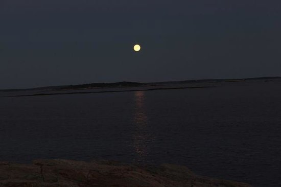 Cook's Island View Motel : Full Moon Rise on the bay