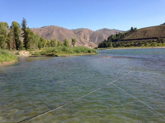 Snake River Angler & Scenic Float Trips: Typical section of the Snake River out of Jackson