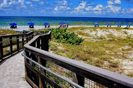 Caladesi Island State Park: Walkway to the beach