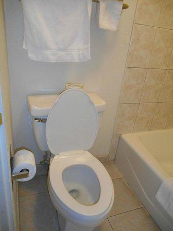 Super 8 San Bernardino/Hospitality Lane: Toilet