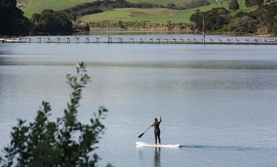Raglan Paddleboarding : Paddle between the bridges