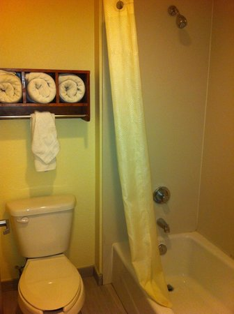 Yosemite Sierra Inn : banheiro