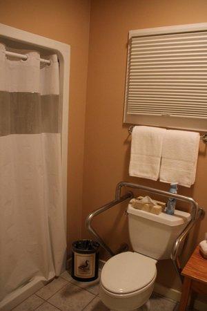Iris Inn: Handicapped shower