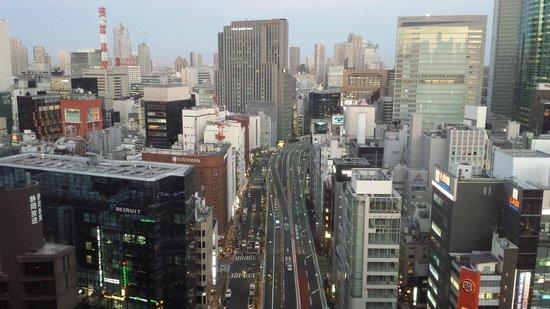 Dai-ichi Hotel Tokyo: view from restaurant