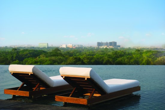 Park Hyatt Chennai: The Edge - View of Guindy Forest