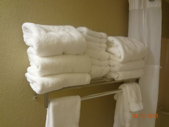 Country Inn & Suites By Carlson, Bloomington at Mall of America: They give you enough towels.