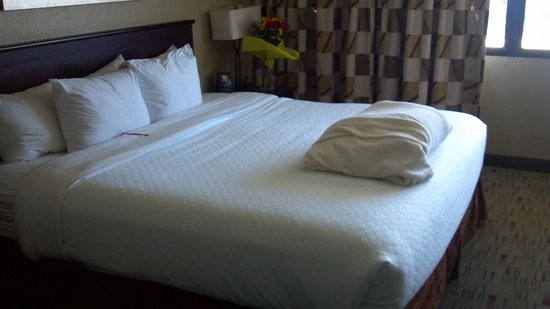 Embassy Suites by Hilton Columbus: Nice bed. Love the extra fluffy blanket provided.